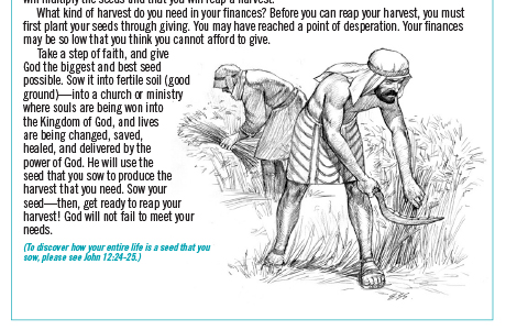 Financial Freedom Bible spread